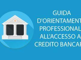 Guida DOrientamento Professionale allAccesso al Credito Bancario