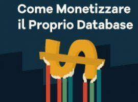 Come Monetizzare il Proprio Database