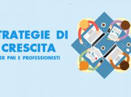 Strategie di Crescita per PMI e Professionisti
