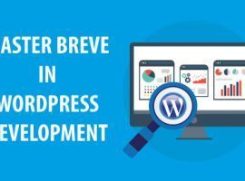 Master Breve in Wordpress Development
