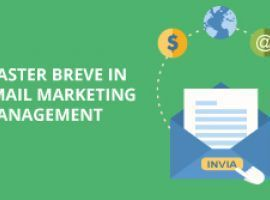 Master Breve in Email Marketing Management