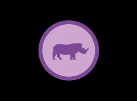 Rhinoceros - Modellazione 3D