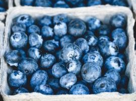 HACCP per addetti alla manipolazione di alimenti