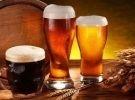 Corso di degustazione birra