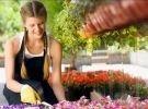 Corso di flower designer