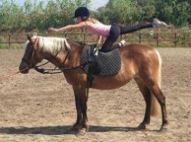 CORSI DI EQUITAZIONE PER BAMBINI E RAGAZZI - Volteggio e avvicinamento al cavallo
