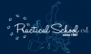 PRACTICAL SCHOOL SRL