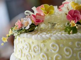 VIDEO CORSO DI CAKE DESIGN