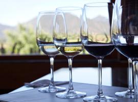 Corso di avvicinamento al vino + kit 12 bottiglie di vino