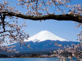 Corso di giapponese online